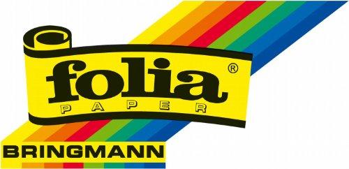 Folia 614/50 01 – Fotokarton 300 g/m², DIN A4, 50 Blatt, perlweiß - 5