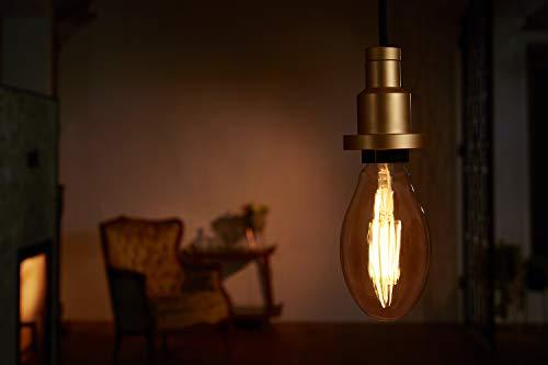 OSRAM LED Vintage Edition 1906 / LED-Lampe in Edison Form mit E27-Sockel - 13